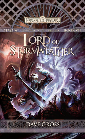 Lord of Stormweather by David Gross