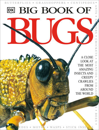 Big Book of Bugs by DK