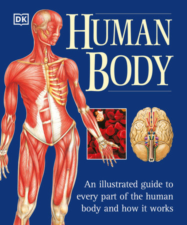 The Human Body by Martyn Page