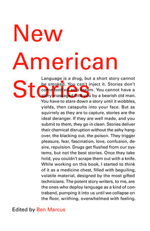 New American Stories by