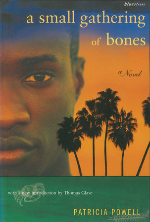 A Small Gathering of Bones by Patricia Powell