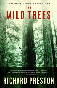 The Wild Trees