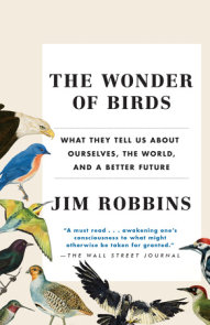 The Wonder of Birds