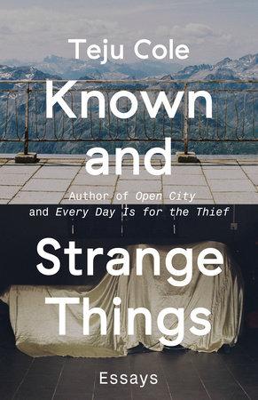 the stranger essay outline