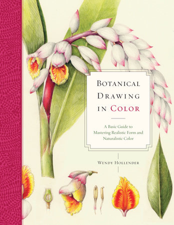 Botanical Drawing in Color by Wendy Hollender