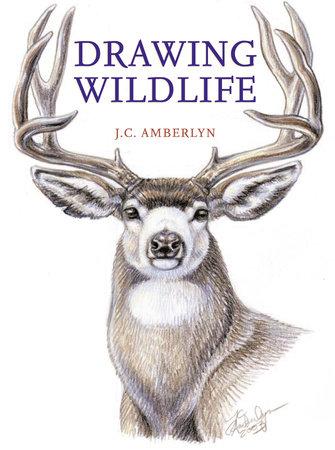Drawing Wildlife by J.C. Amberlyn