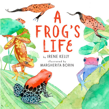 A Frog's Life by Irene Kelly