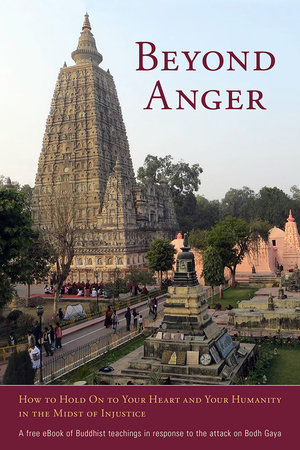 Beyond Anger by
