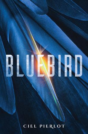 Bluebird by Ciel Pierlot