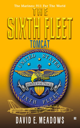 The Sixth Fleet: Tomcat by David E. Meadows