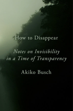 How to Disappear by Akiko Busch
