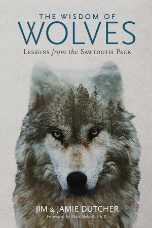 The Wisdom of Wolves by Jim Dutcher and Jamie Dutcher