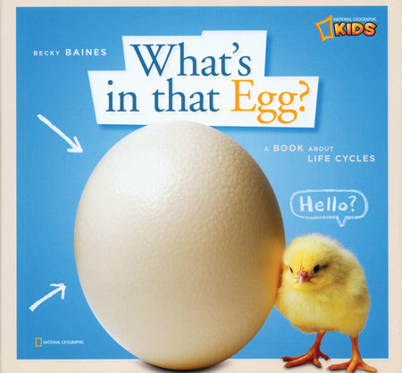 ZigZag: What's in That Egg? by Becky Baines