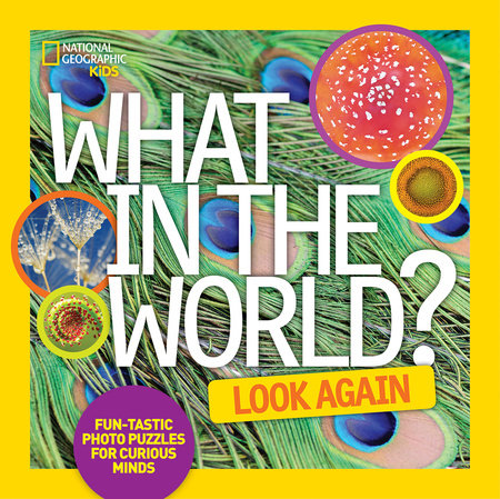 What in the World: Look Again by National Geographic Kids