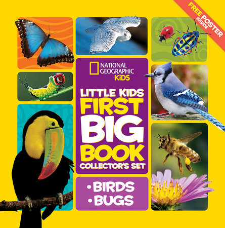 Little Kids First Big Book Collector's Set: Birds and Bugs by Catherine D. Hughes