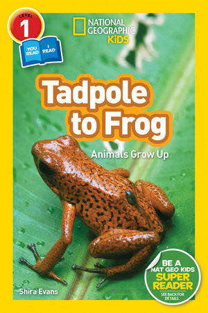National Geographic Readers: Tadpole to Frog (L1/Co-reader) by Shira Evans
