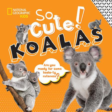 So Cute! Koalas by Crispin Boyer