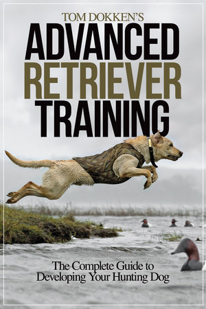 Tom Dokken's Advanced Retriever Training by Tom Dokken