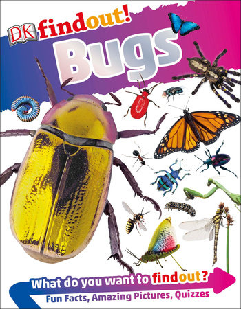 DKfindout! Bugs by Andrea Mills