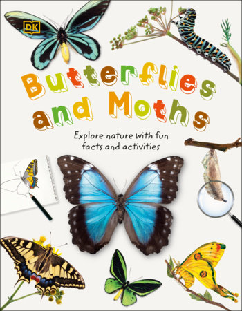 Butterflies and Moths by DK