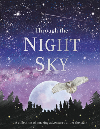 Through the Night Sky by DK
