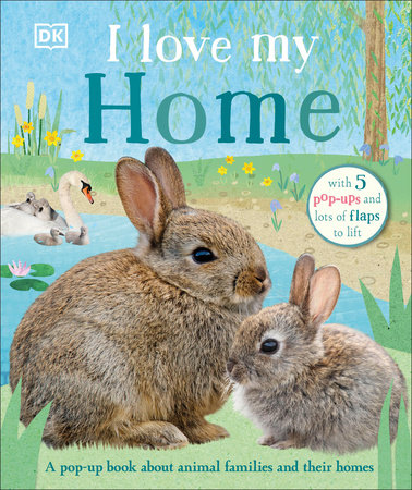 I Love My Home by DK
