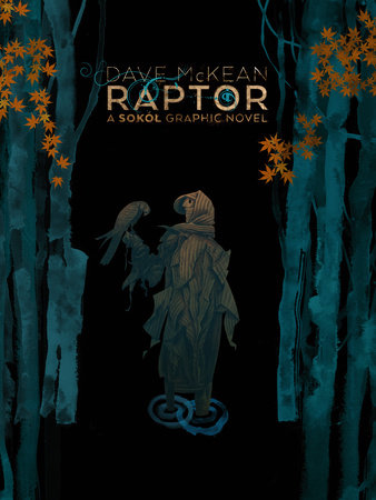 Raptor: A Sokol Graphic Novel by Dave McKean