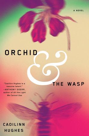 Orchid and the Wasp by Caoilinn Hughes