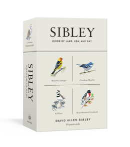 Sibley Birds of Land, Sea, and Sky