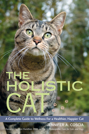 The Holistic Cat by Jennifer A. Coscia