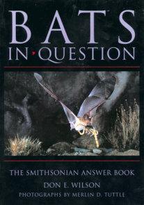 Bats in Question