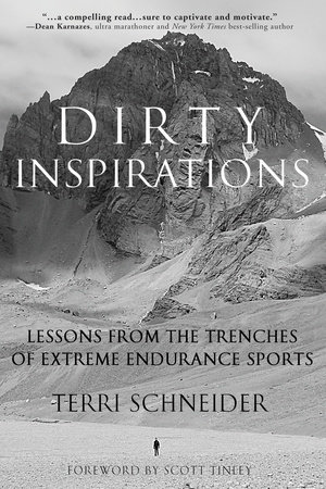 Dirty Inspirations by Terri Schneider