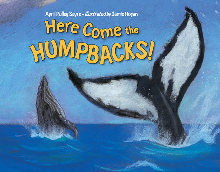 Here Come the Humpbacks! by April Pulley Sayre