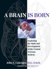A Brain Is Born