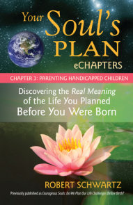 Your Soul's Plan eChapters - Chapter 3: Parenting Handicapped Children