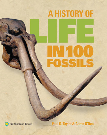 A History of Life in 100 Fossils by Paul D. Taylor and Aaron O'Dea