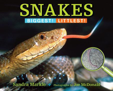 Snakes by Sandra Markle