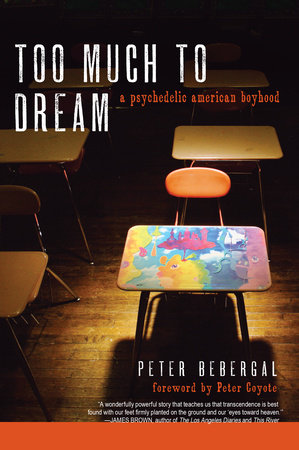 Too Much to Dream by Peter Bebergal