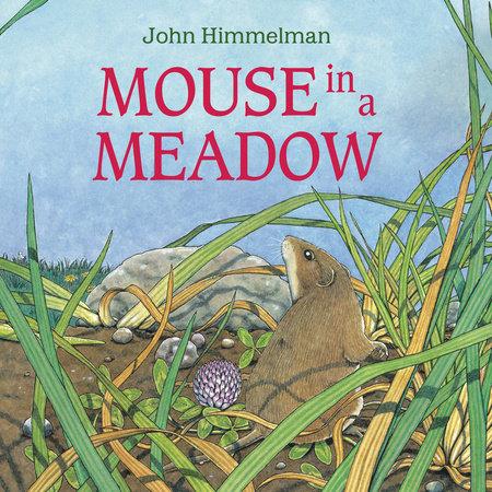 Mouse in a Meadow by John Himmelman