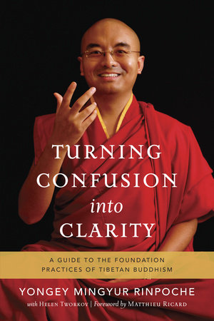 Turning Confusion into Clarity by Yongey Mingyur Rinpoche and Helen Tworkov