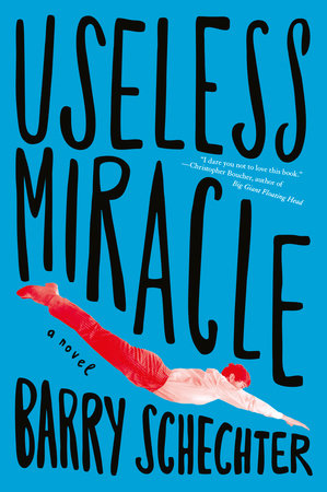 Useless Miracle by Barry Schechter