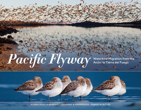 Pacific Flyway by Audrey DeLella Benedict, Geoffrey A. Hammerson and Robert W. Butler