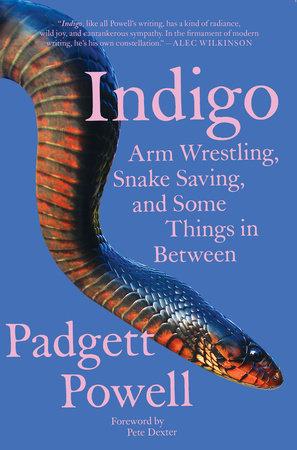 Indigo by Padgett Powell