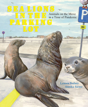 Sea Lions in the Parking Lot by Lenora Todaro