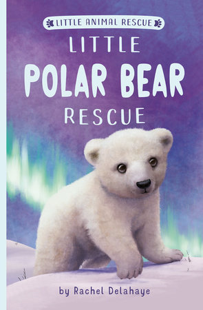 Little Polar Bear Rescue by Rachel Delahaye