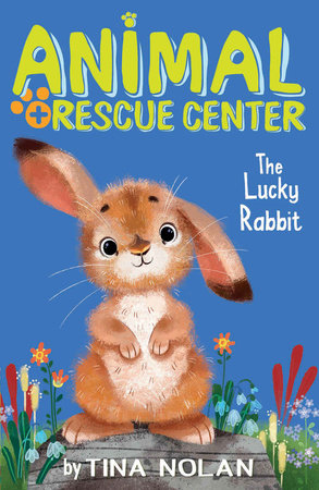 The Lucky Rabbit by Tina Nolan; illustrated by Anna Chernyshova