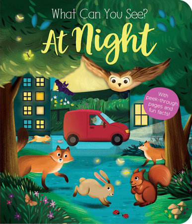 What Can You See? At Night by Kate Ware
