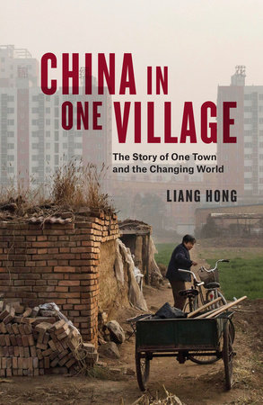 China in One Village by Liang Hong
