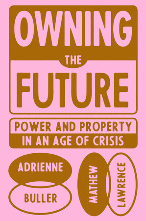 Owning the Future by Mathew Lawrence and Adrienne Buller