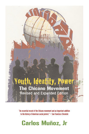 Youth, Identity, Power by Carlos Munoz